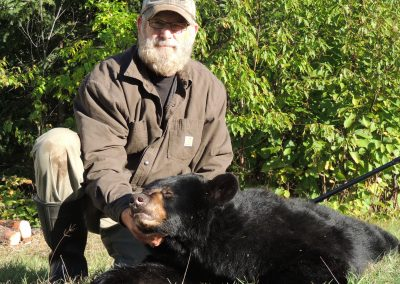 Black Bear Hunting Ontario