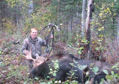 moose taken by crossbow