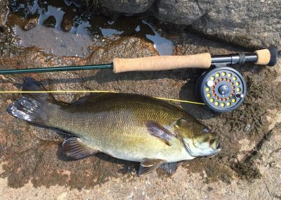 fly fishing trip bass northern ontario