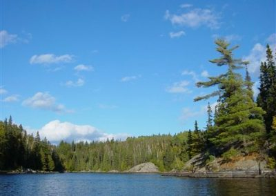River fishing walleye and pike