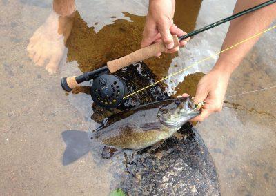 fly fishing spanish river ontario