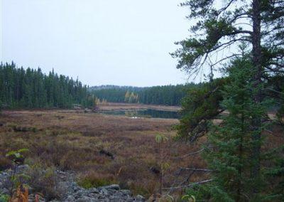 moose hunting area shooting star camp