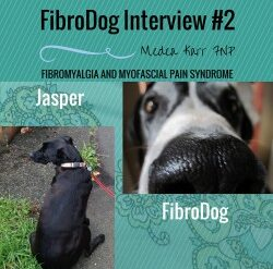 FIBRODOG INTERVIEW #3- GHOST THE FIBRO SUPPORT CAT