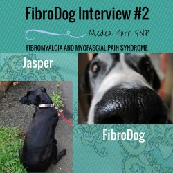 FIBRODOG INTERVIEW #2- JASPER fibromyalgia