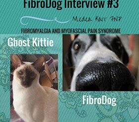 FibroDog Interview #2: Jasper the Island Support Dog