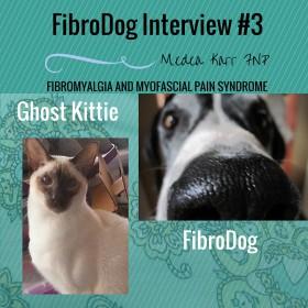 FIBRODOG INTERVIEW #3- GHOST KITTIE