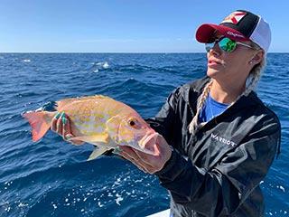 siesta key family fishing trips