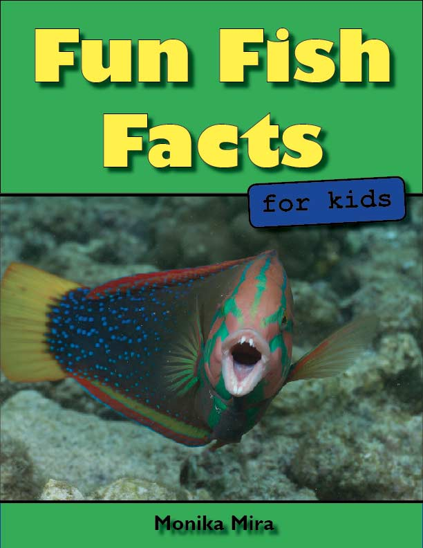 Fun Fish Facts for Kids