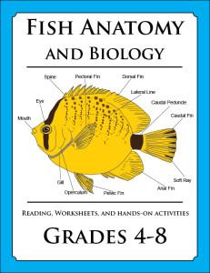 Fish_Anatomy_lesson