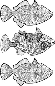 triggerfish coloring page