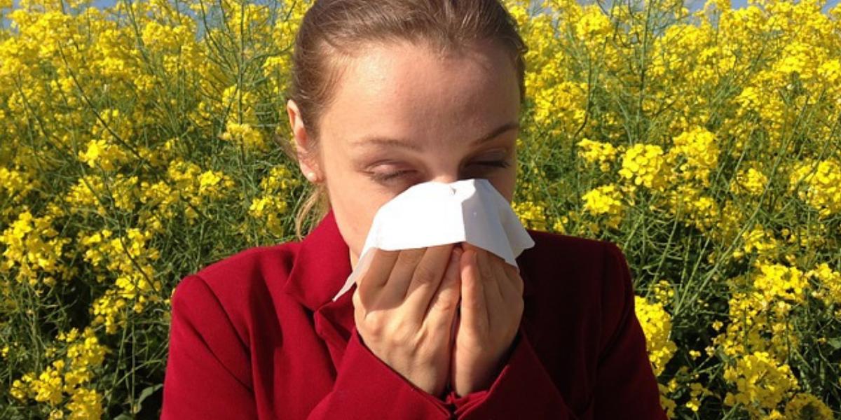 Air Cleaners help reduce allergeries