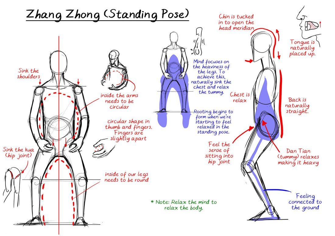 Zhan Zhuang, a postura da árvore