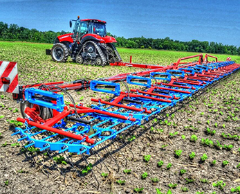 Tine Weeder (Original Harrow)