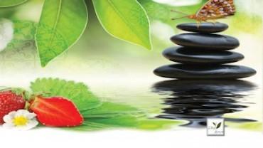 6 Wellness Spa Teas that make you happy