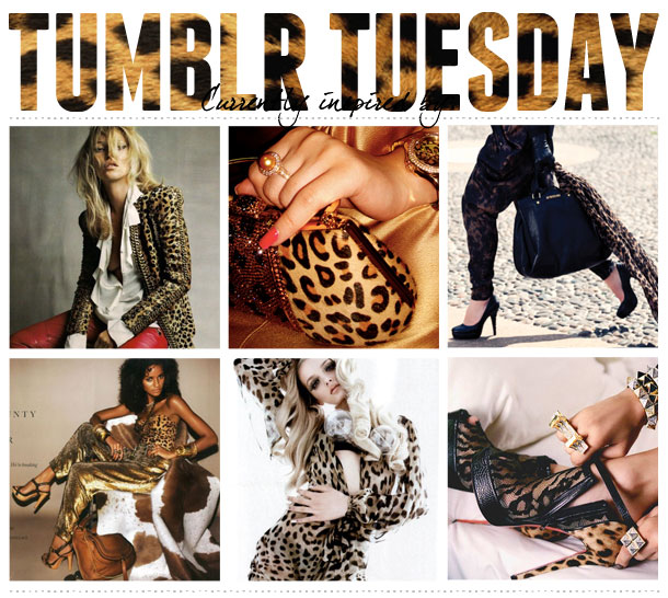 design inspiration leopard print fashion