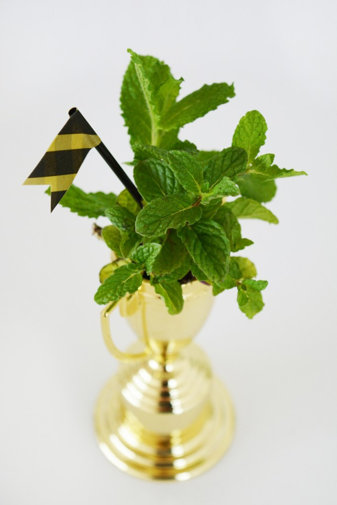 It's Off to The Races! Kentucky Derby Party Inspiration   amberpizante.com