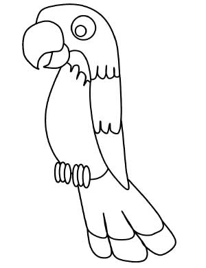 Kids-Parrot