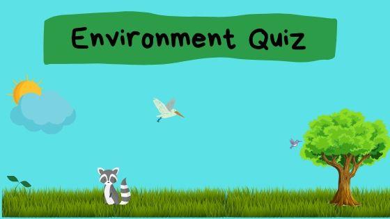 Environment Quiz