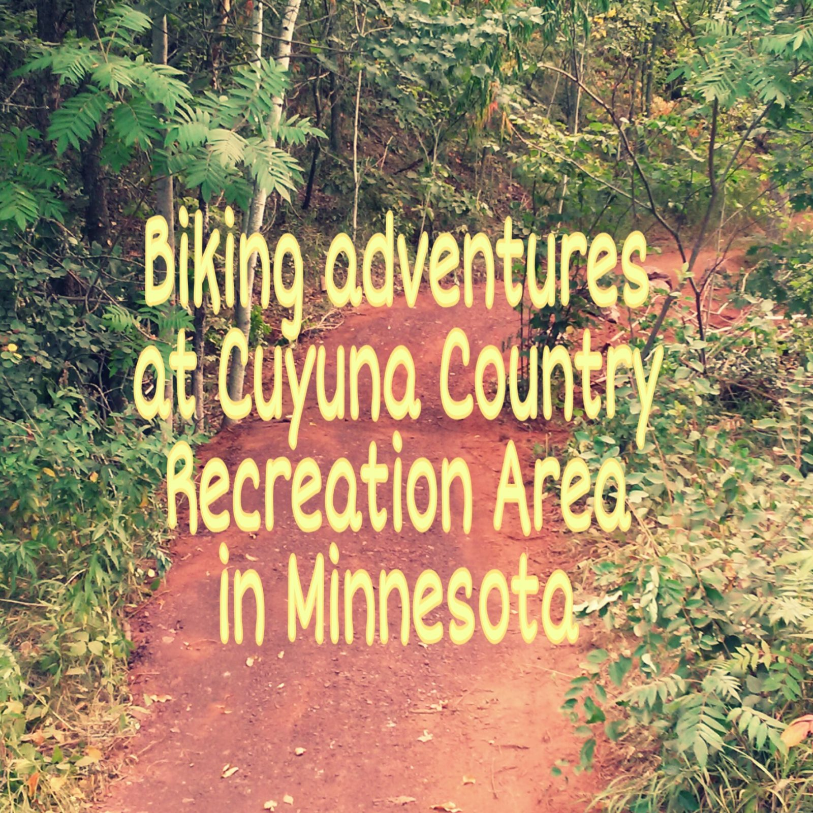 Biking Adventures in Minnesota