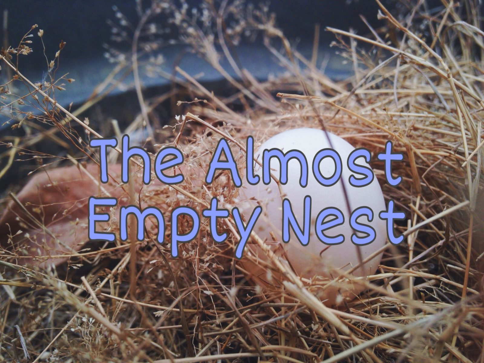 The Almost Empty Nest