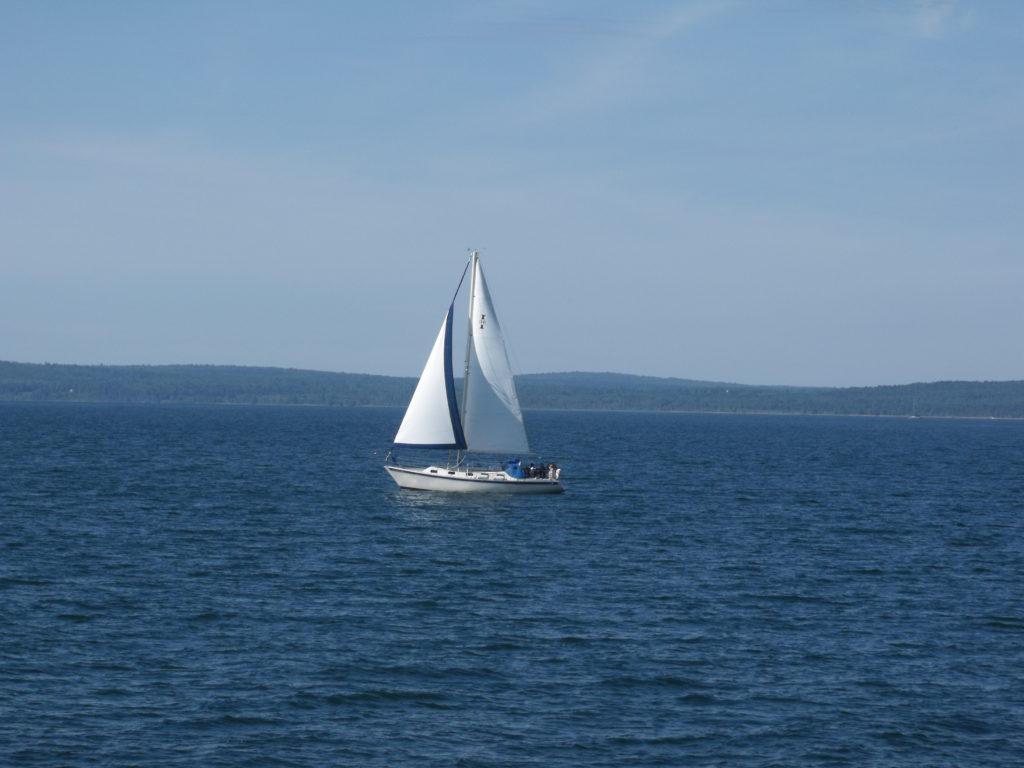 Salboat