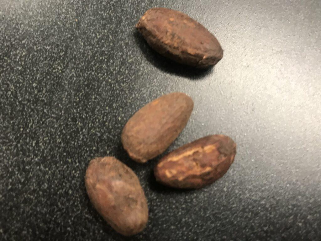 dried bean