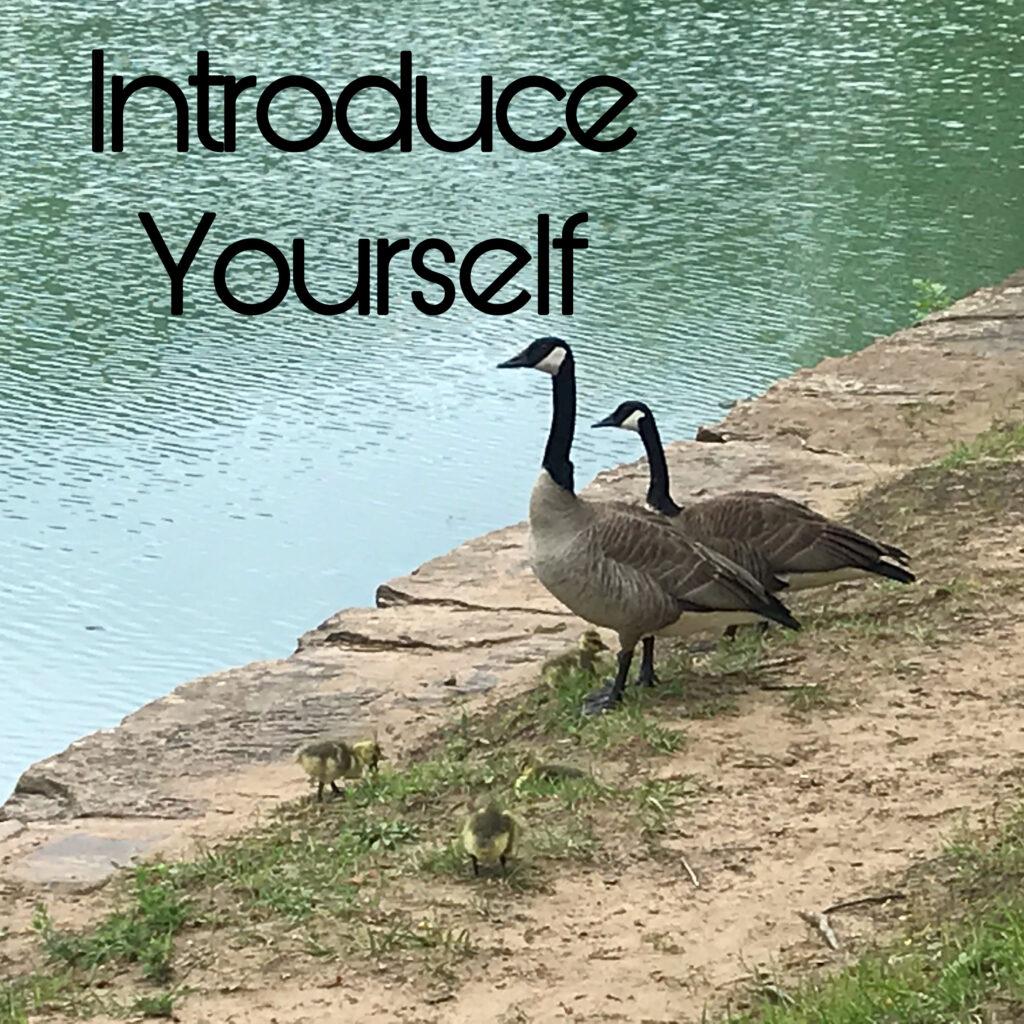 Introduce Self