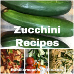 7 Days of Zucchini Recipes for the Family