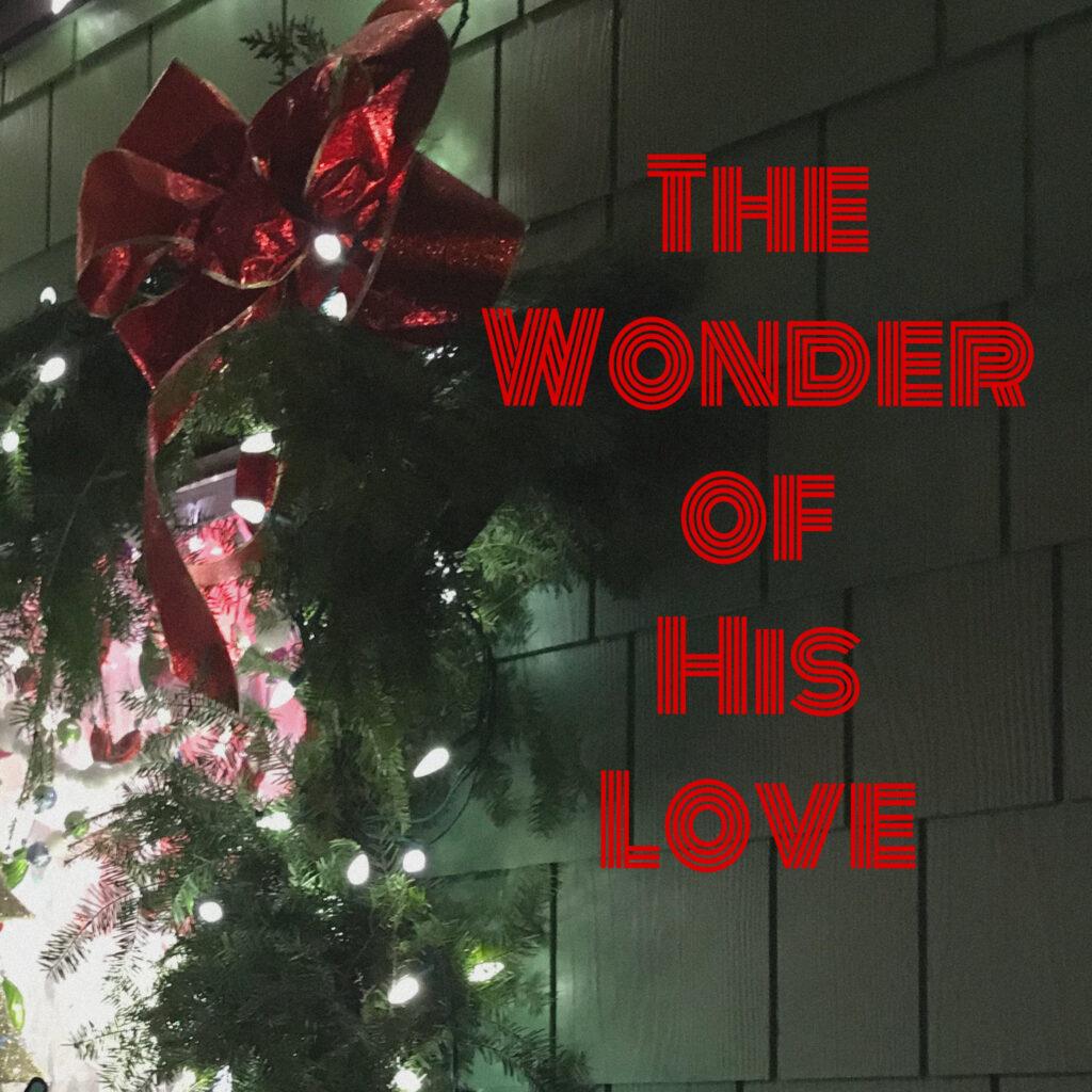 Savor the Moments this Christmas Season with Family