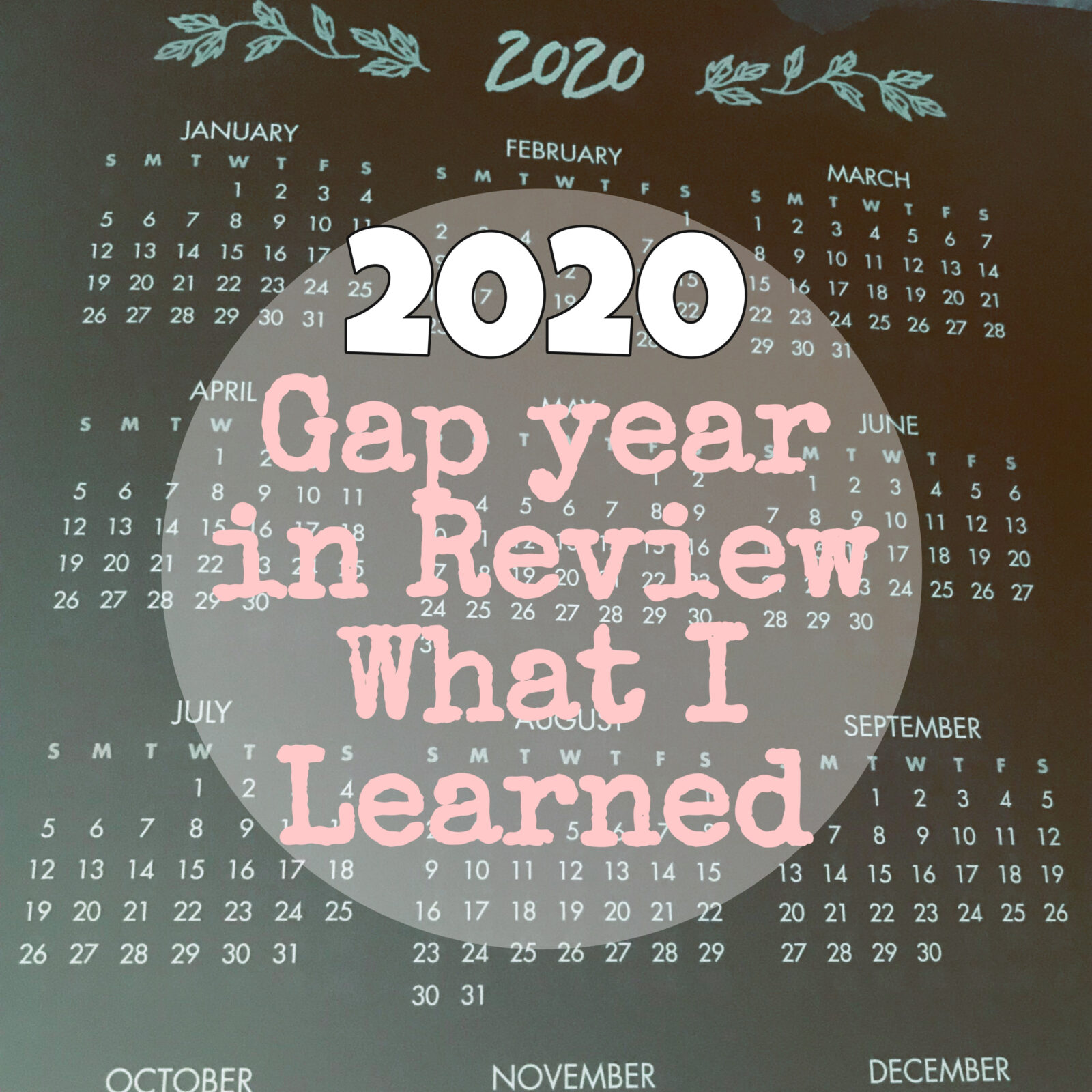 Our Gap Year in Review / What I Learned in 2020