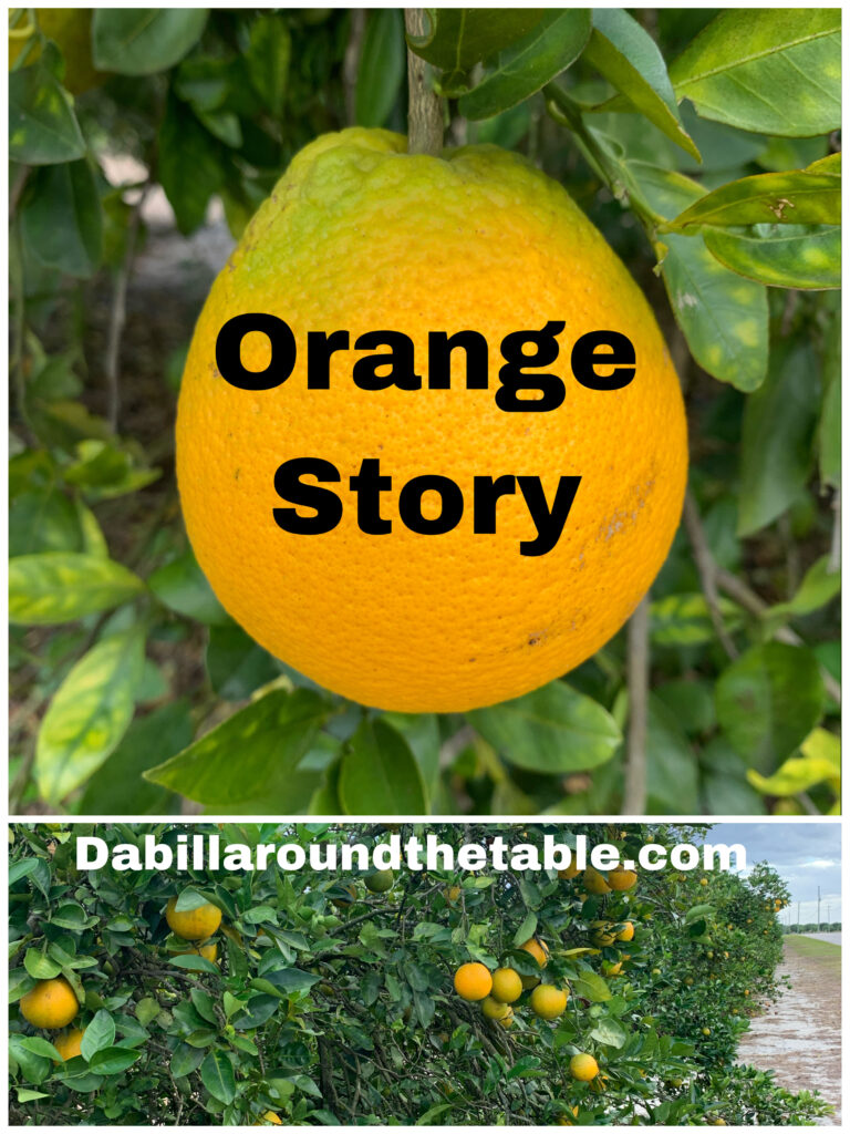 Orange Story and Eve in the Garden