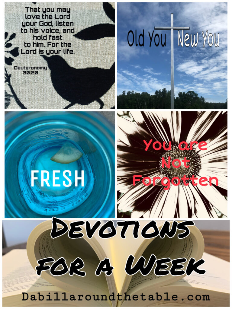 seven devotions for your week