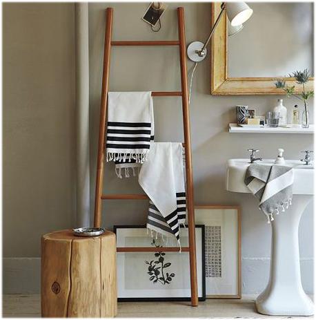 ladder bathroom 3