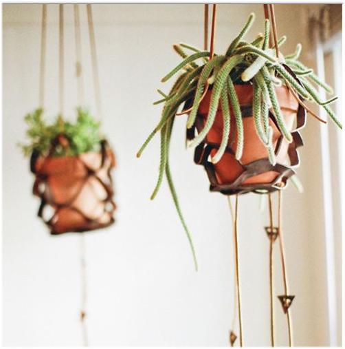 leather pot