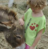Day Camp at Touchstone Farm