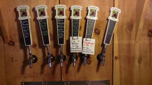Mooselick Brewery Taproom Taps