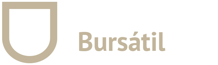 Orlando Bursatil SA