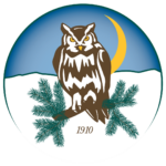 horned owl on a spruce branch with crescent moon