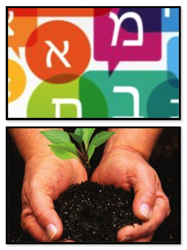 Seeding the Jewish Future With Hebrew: A Twist on Tu B'Shevat