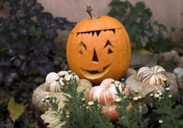 Idea for the Weekend: Carve a Pumpkin