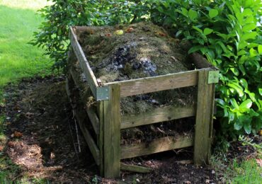 Activity for the Week: Start a Compost Pile