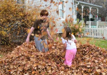 Activity of the Week: Jump in a Leaf Pile!