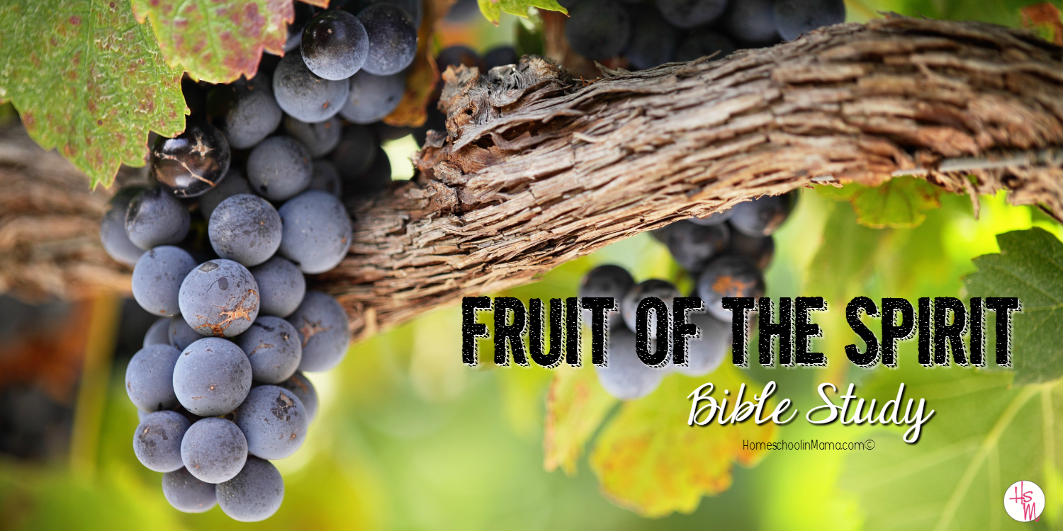 Fruit of the Spirit Bible Study