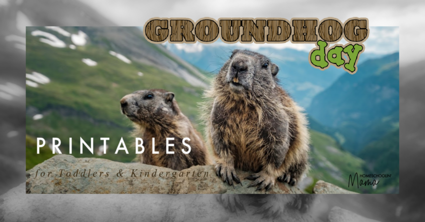 groundhog day learning pack printables