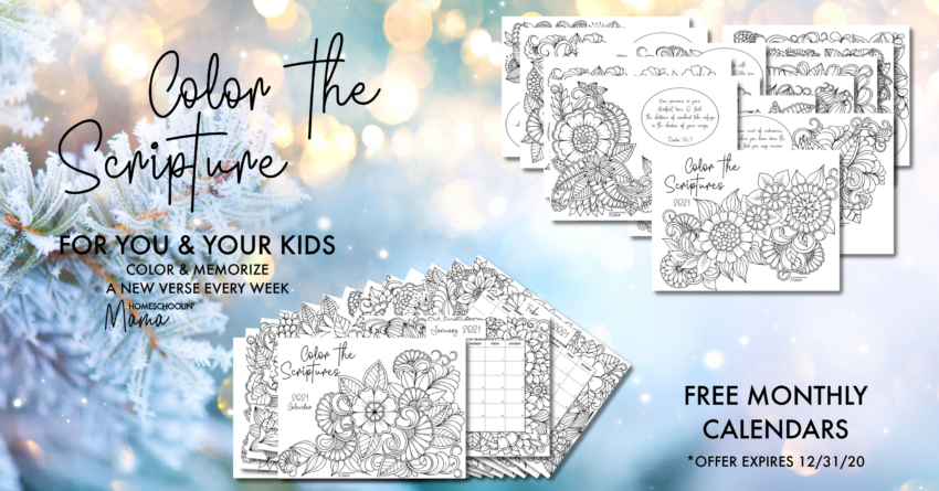 Color the Scriptures Bundle Sale