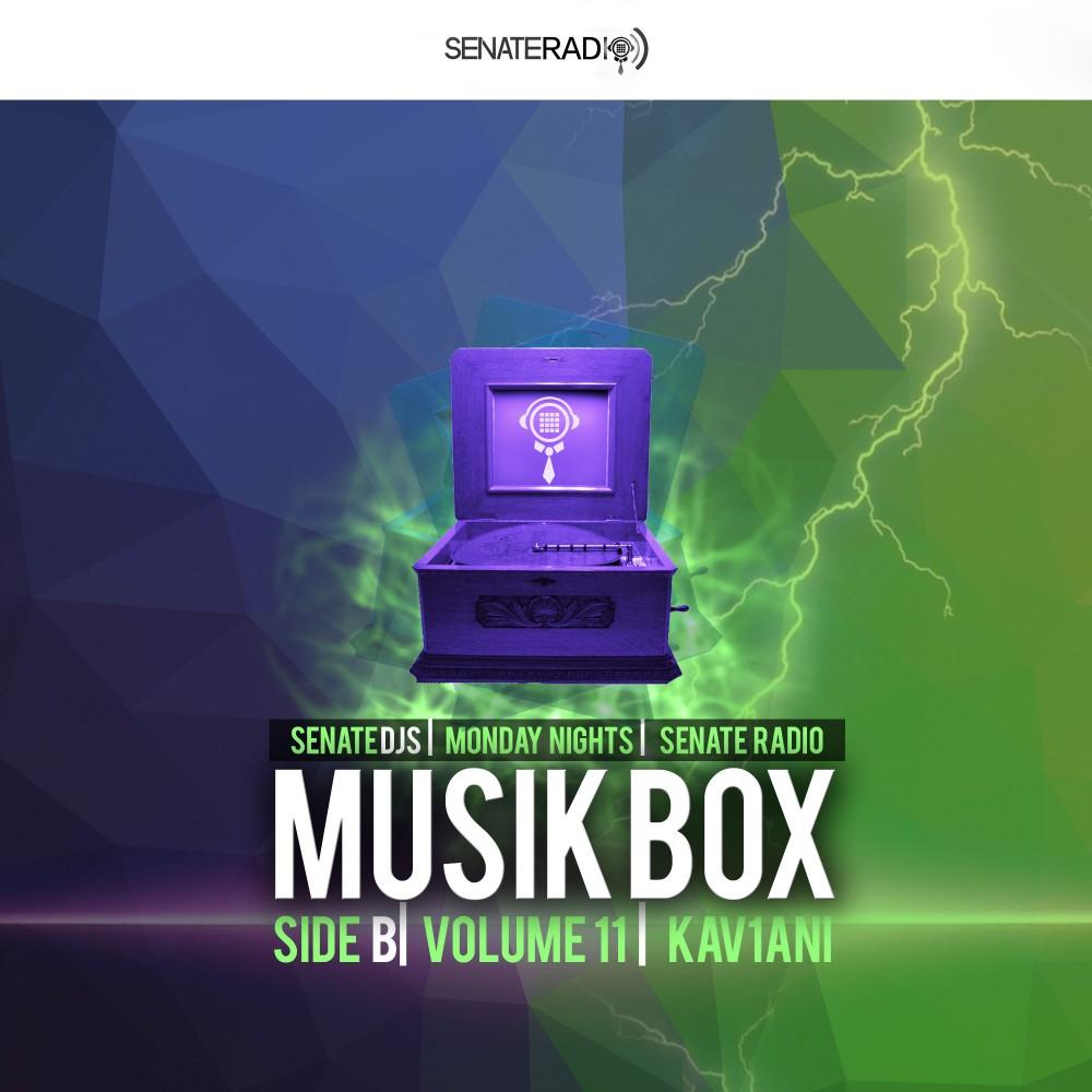 Senate DJs| Musik Box - Volume 11| Kav1ani| Side B