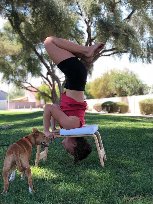 yoga benches
