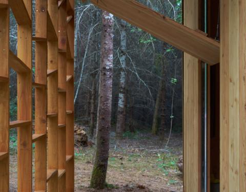 """Emerge""    Bauman Tree Farm Retreat"