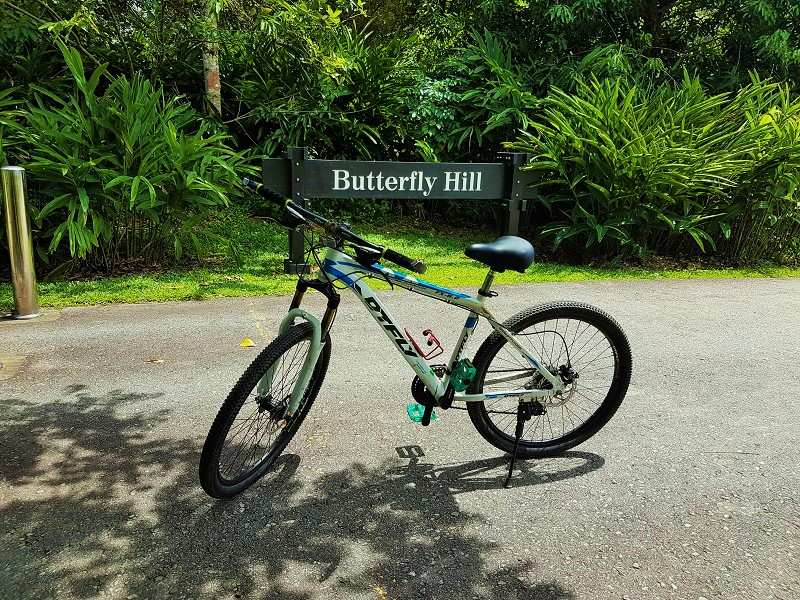 Butterfly Hill - Detailed Guide to Pulau Ubin Singapore