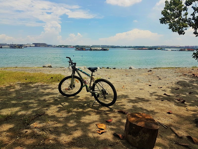 Jelutong Campsite Viewpoint - Detailed Guide to Pulau Ubin Singapore